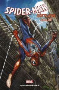 spidermangoettlichegnade_1_hc